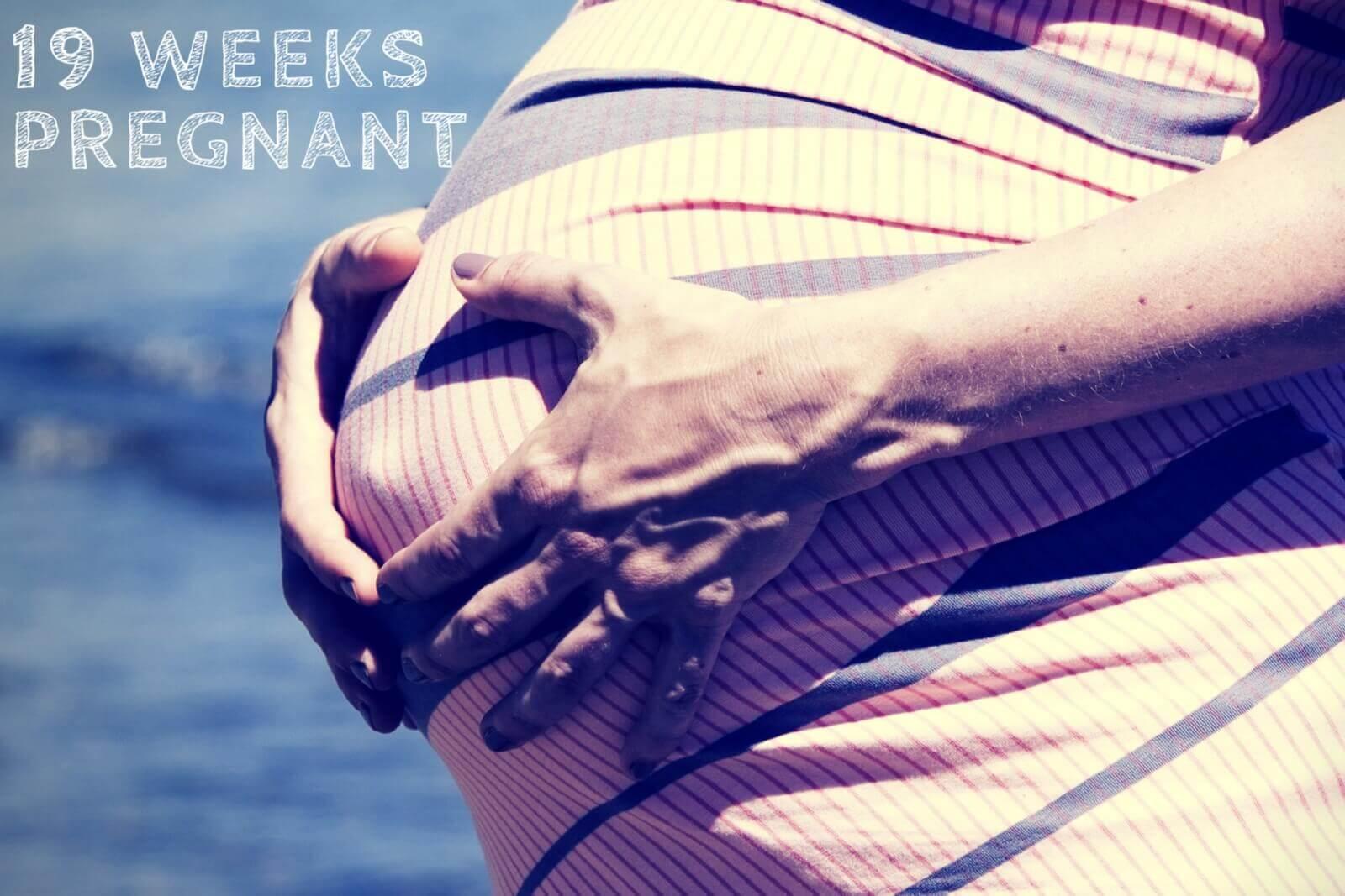 19-Weeks-Pregnant-Hero-Image