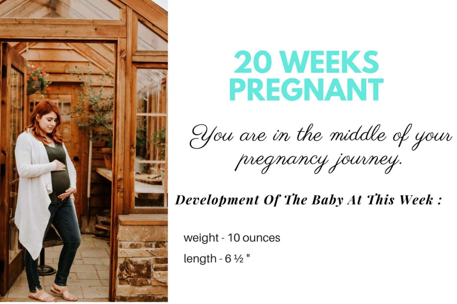 20-Weeks-Pregnant-Hero-Image