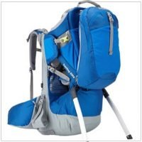 Thule-Sapling-Child-Carrier-Reviews-Image-2