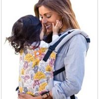 Tula-Baby-Carrier-Review-Image-2