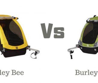 Burley-bee-vs-d'lite-Image