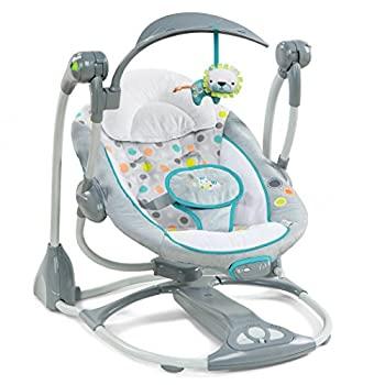 Ingenuity-ConvertMe-Swing-2-Seat-Portable-Swing-Ridgedale